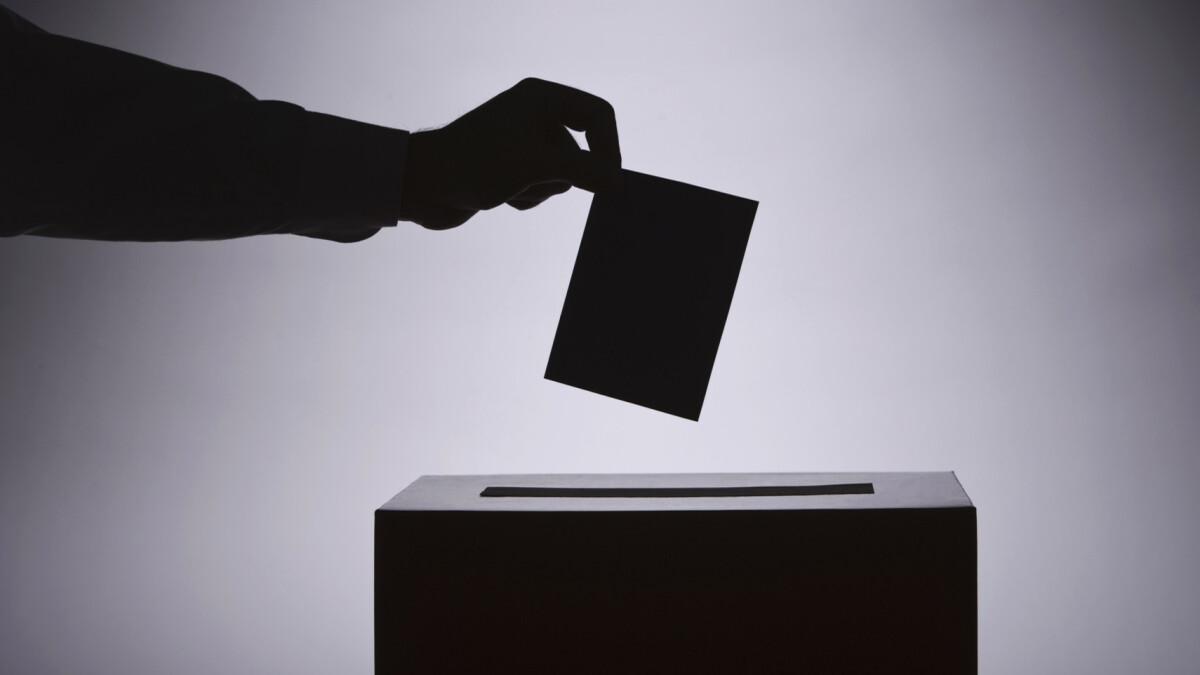SDBC AGM Voting